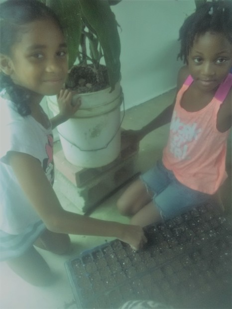 alissa-and-che-planting
